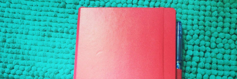 mon bullet journal dans un carnet leuchturm 1917 A5 pointillé couleur baie
